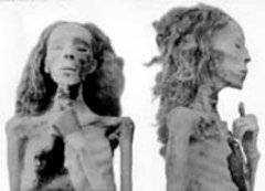 Mumie Nefertiti?